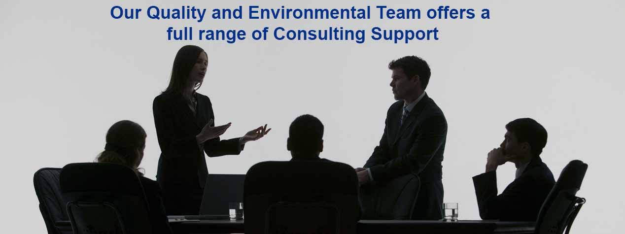 Quality and Environmental Consulting Capabilities